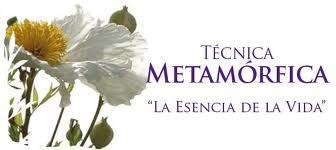 Terapia Metamórfica
